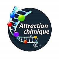 Attraction Chimique - Université Laval